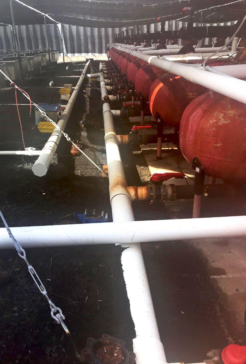 corrosión tuberías metálicas
